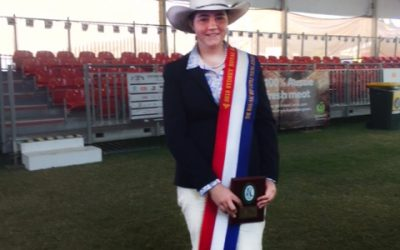 Tabby Cross Grand Champion at Royal Sydney Easter Show