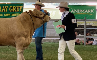 Tabby Cross wins at 2019 Royal Perth Show